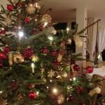 Weihnachten im Sonnenhof