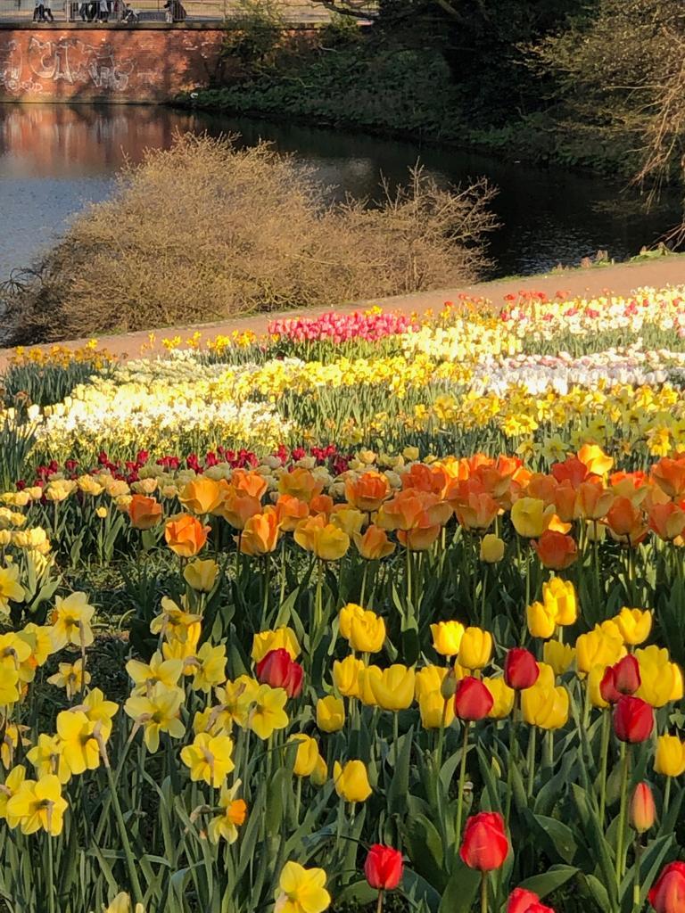 Kurparkimpressionen im Frühling